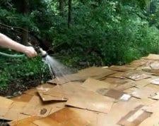 Sheet Mulching Wetting the Layers