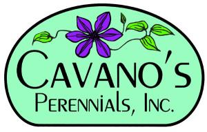Cavanos Perennials.logo