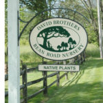 Company Image - David Brothers Nursery