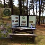 ELA Display at SEMPBA Pinefest