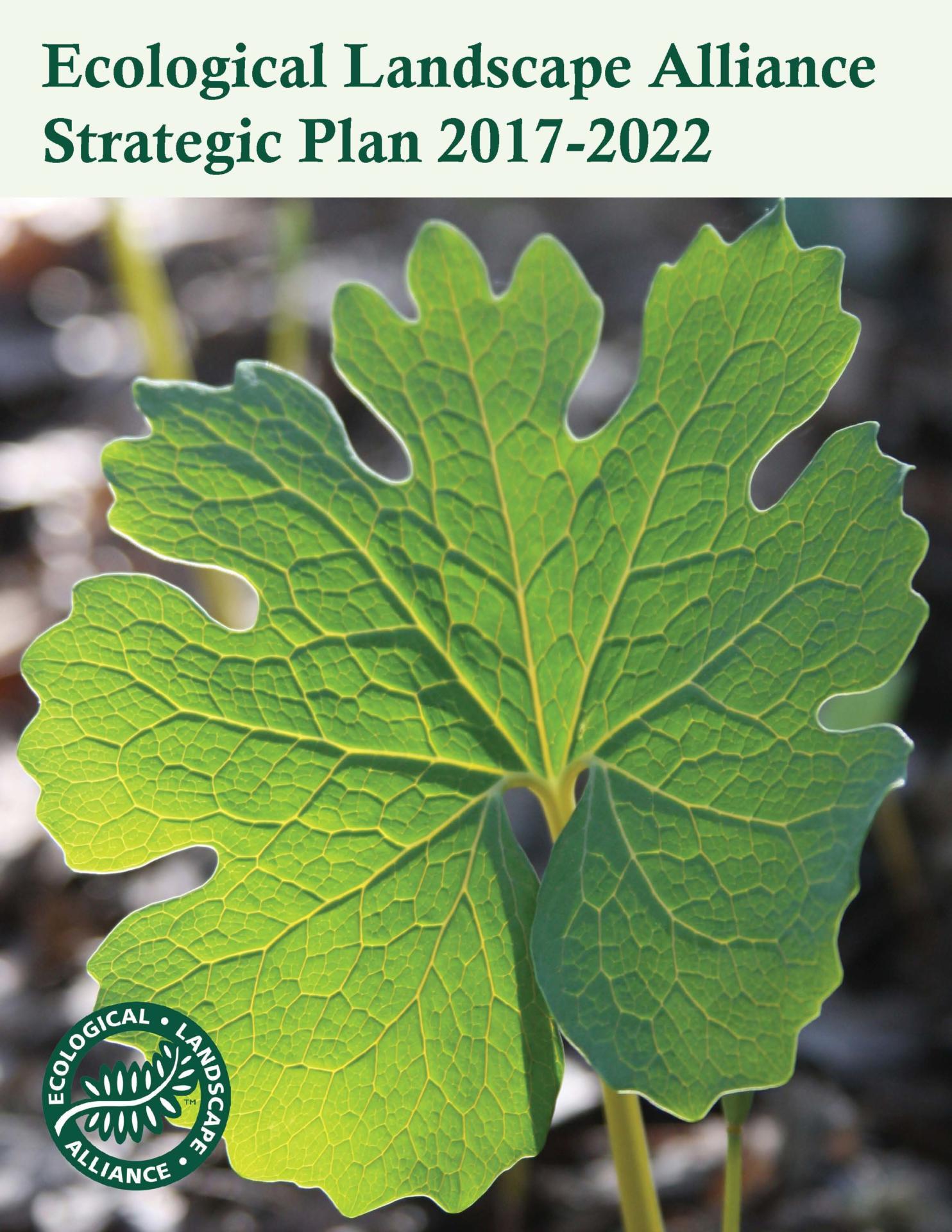 ELA Announces 2017 2022 Strategic Plan