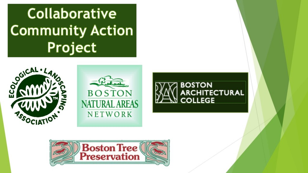 Collaborative Community Action Project - Logos