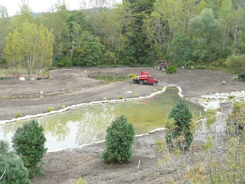 After building demolition, the project site surrounding West Brook was graded and coir logs were installed to prevent soil from entering the treatment ponds until plants and grasses could become established helping to stabilize the site. Part of the treatment swale/pond, located midway through the treatment process, has filled with groundwater.