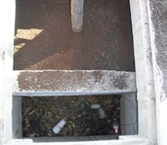 A collection sump on the front end of the tree filter unit keeps trash and leaves from accumulating on the surface of the media bed and restricting infiltration.