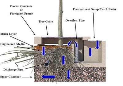 Cross section of a tree filter box