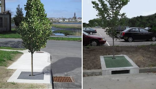 catch basin & curb inlet