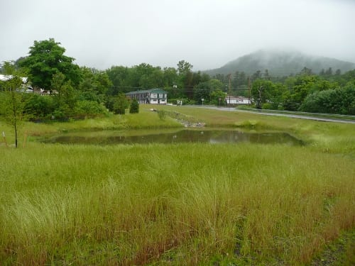 Stormwater will enter from Route 9 directly into the pond. View is toward the forebay pond. Photo: GLA