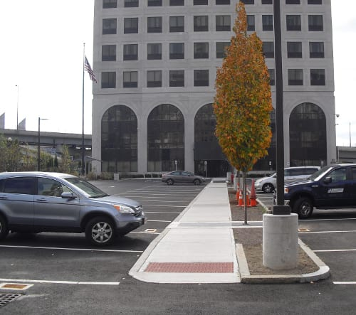 A view of the new island, looking toward the MassDOT building, highlights the Columnar Sugar Maples.
