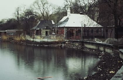 By 1970, Central Park had fallen into a state of neglect, and crime increased as people no longer cared to visit.