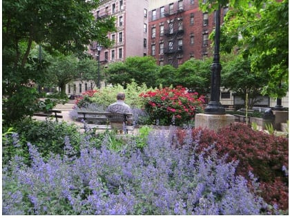 Well-planted places soften and civilize city lives.