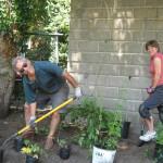 Arcola Project Volunteers