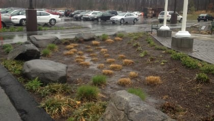 Runoff from the Plaza of Honor feeds into a bio-retention swale.