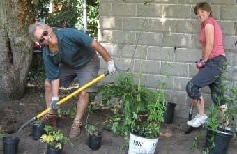 Arcola Project Volunteers.340