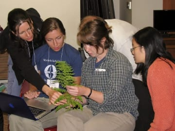Use Go Botany to identify plants at any time of year, based on the seasonal features you are able to observe.  Photo credit:  Aaron Ellison.