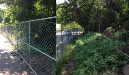 Invasive plants grew up to the fence at West Street Urban Wild (left), but were still mowed low a few weeks after the goats were moved.