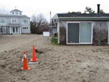 A utility pole just 12 feet off the corner of the house hosted a tenacious tease of bittersweet before removal. Once care lapsed, the turf grass eliminated itself from the site by dying off.