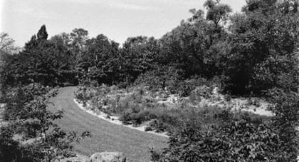 this photo from 1933 shows a view of the local flora garden - Wild Garden