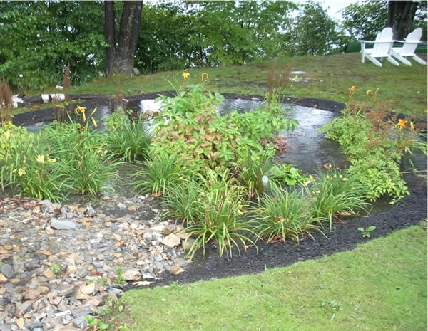 Guiding the Rain: Aesthetic Form - Ecological Function ...