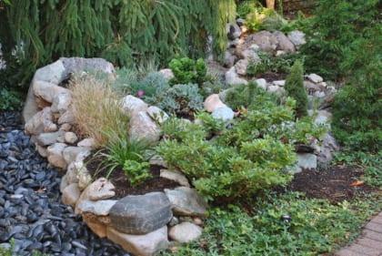 Rock garden 2.420