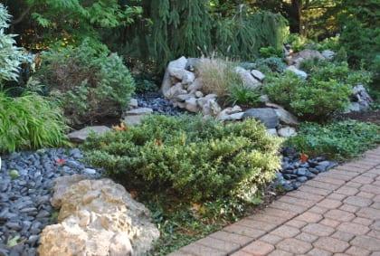 Rock garden 3.420