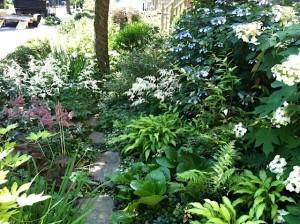 Spitzer Lawn-less Garden