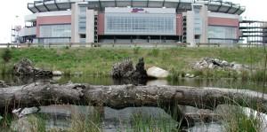TB-Portfolio-Neponset-Stadium2-1010x500