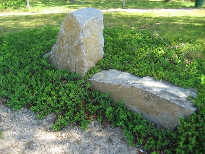 Shore juniper (juniperus conferta) forms spreading pools of green around the set boulders of a seating/retaining wall.