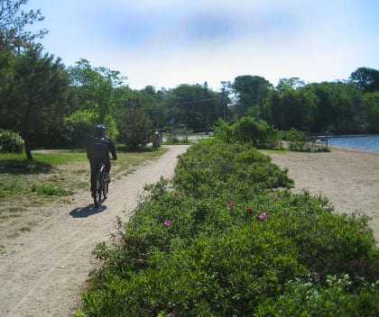 While the main goal was ecological restoration, the project also opened up the lakeshore to a wider variety of human uses. The multi-use path is popular throughout the year for walkers, joggers, and cyclists. Being able to get close to the lake and enjoy it helps community members keep health among their priorities.