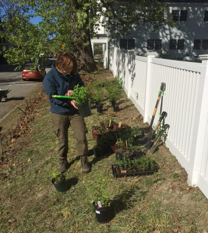 Willow checks her planting plan while laying out plants before planting begins.