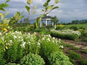 Linden Land Garden
