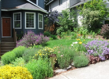 A pollinator garden posted with a Pollinator Habitat sign.