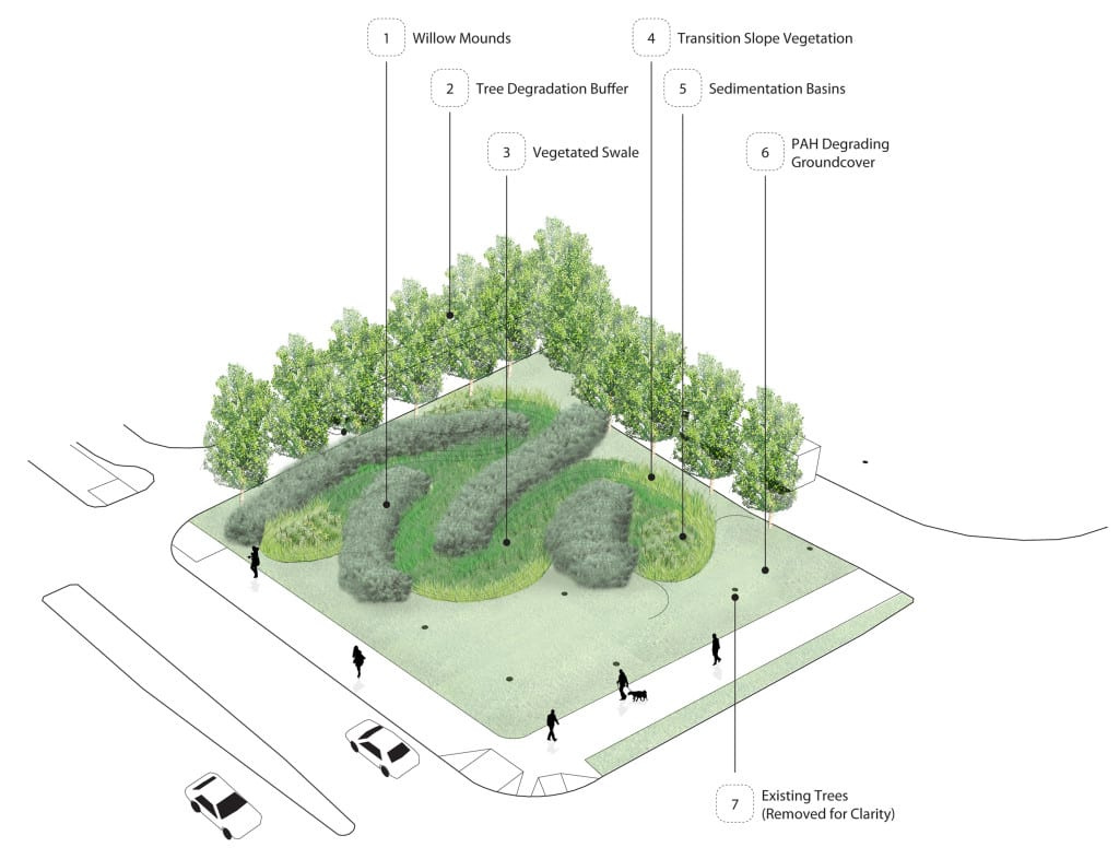 Landscape Architecture Drawing Trees