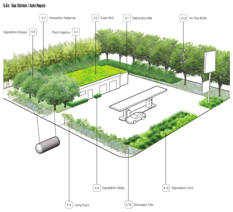 OFFSHOOTS- Phytotechnology Book Renderings.2