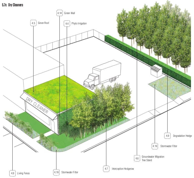 OFFSHOOTS- Phytotechnology Book Renderings.4