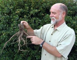 Robert Kourik with Roots
