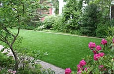 Transition to Natural Lawn - Photo Courtesy of Osborne Organics