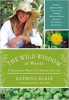 Wild Wisdom Cover
