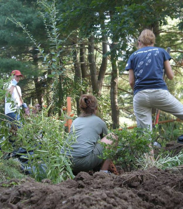 Volunteers have provided essential help to create the garden.