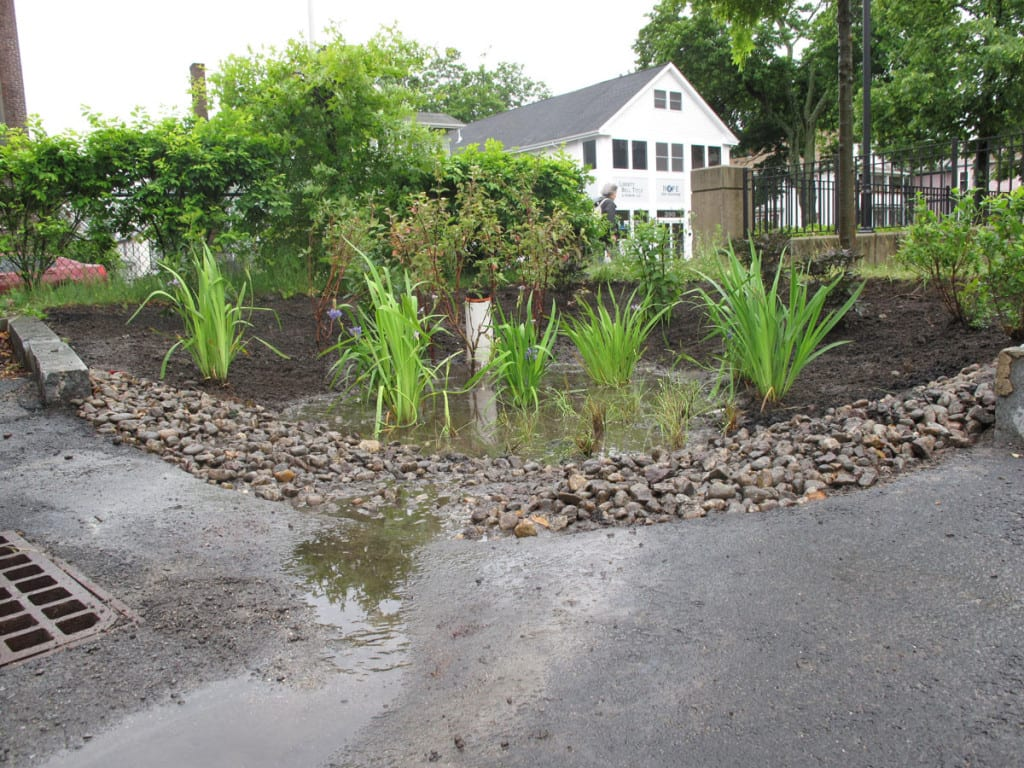Image of rain garden at work. In low flow water bypasses storm drain at left, filters through gravel check dam, then pools in low area and soaks into ground