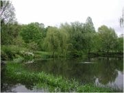 Mount Auburn Cemetery Bio-Filtration at Willow Pond Includes 2,000 Aquatic Plants