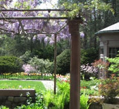 Habitat Formal Garden CR