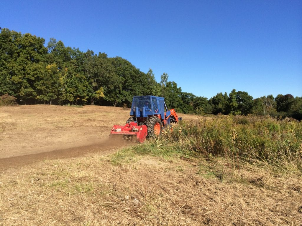 We used the extreme duty shredder to smooth a badly rutted trail through the middle of the field. Shown to the right of the shredder, patches of desirable vegetation, such as milkweeds, blackberries, and goldenrod were left intact.