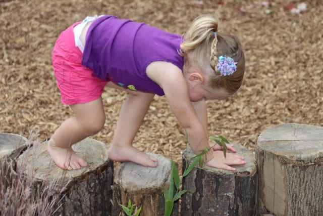 Every element in a natural play park encourages visitors to get out and play.