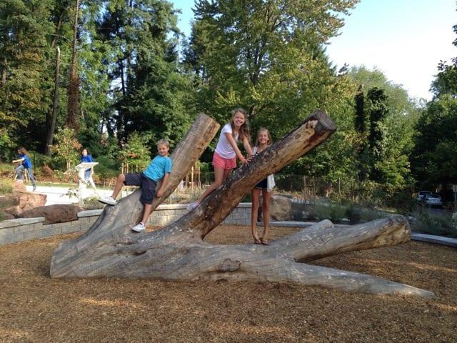 "A group of visitors enjoy the ""stump scramble."""