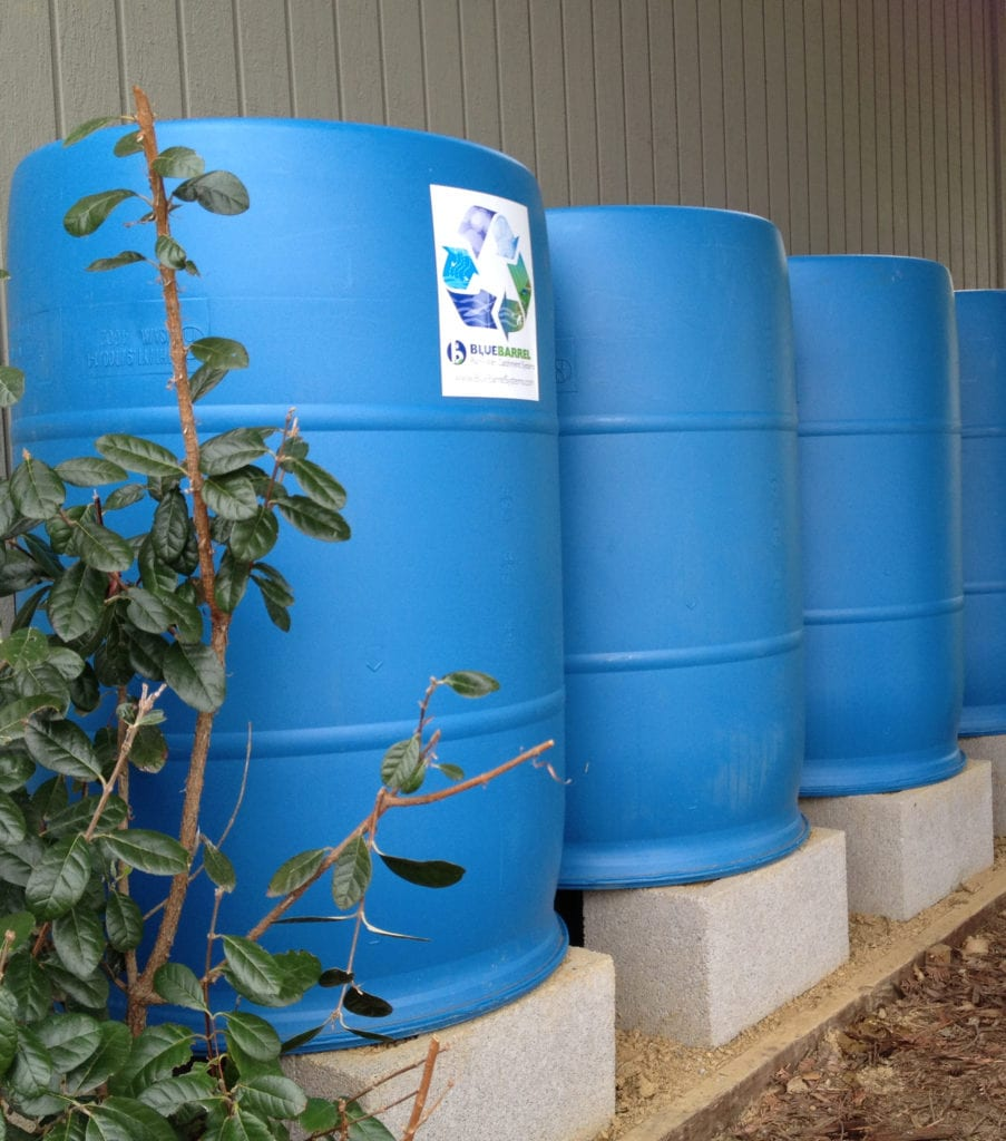 This 6-barrel BlueBarrel Rainwater Catchment System™ irrigates a water-wise front yard with a gravity-fed drip irrigation line.