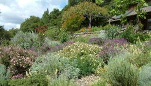Beatrice Stonebanks Landscape