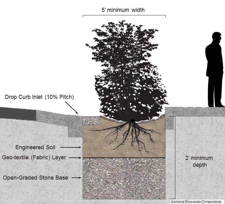 General bioswale dimensions