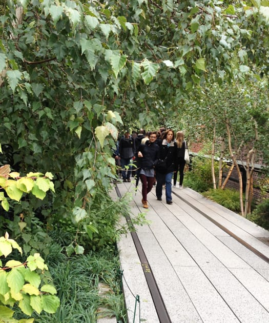 New York's High Line provides lovable, valuable green infrastructure. Photo Janice Ward