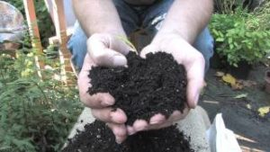 Organic Mechanic Soils