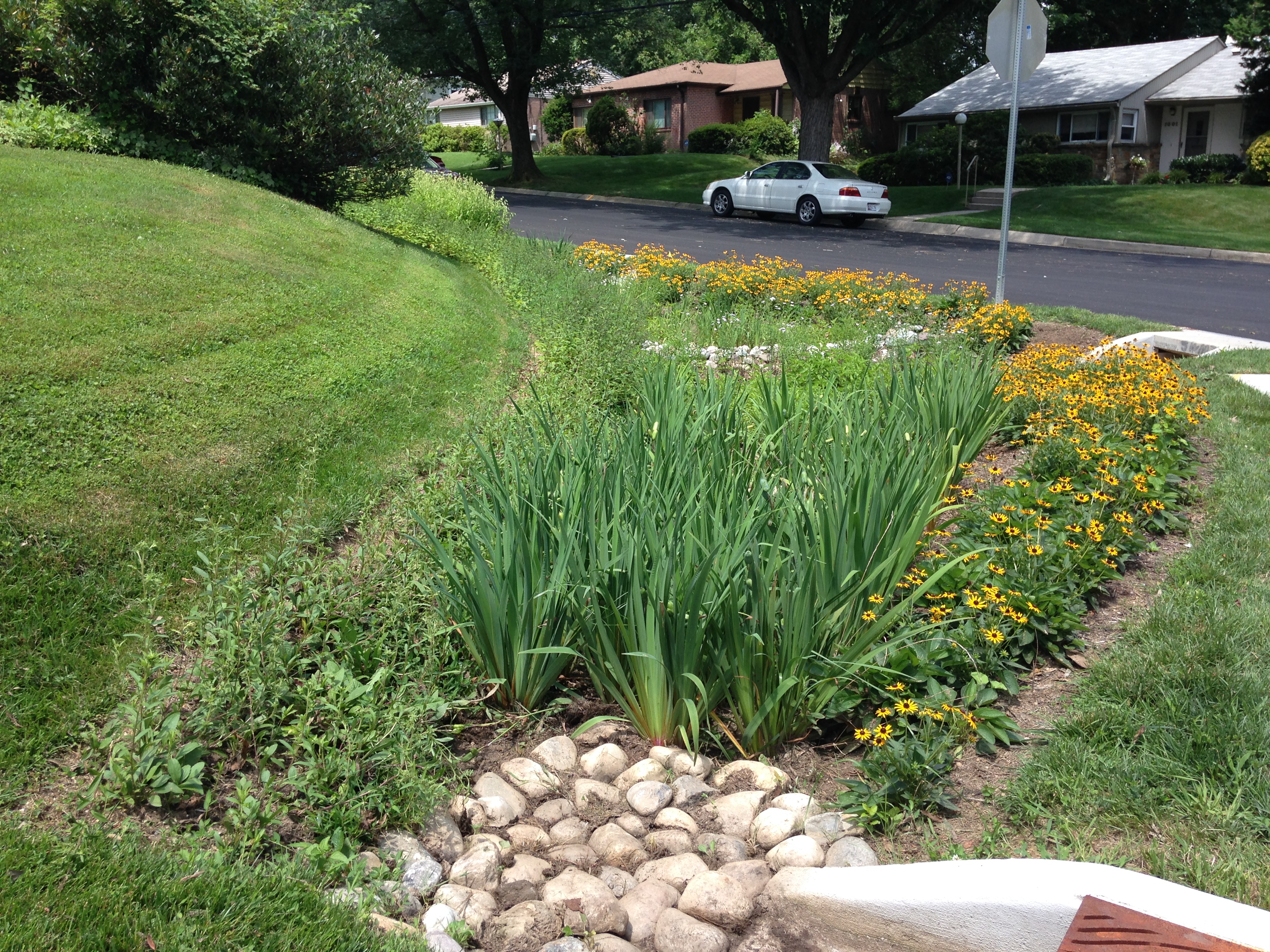 Stormwater Solutions - MT